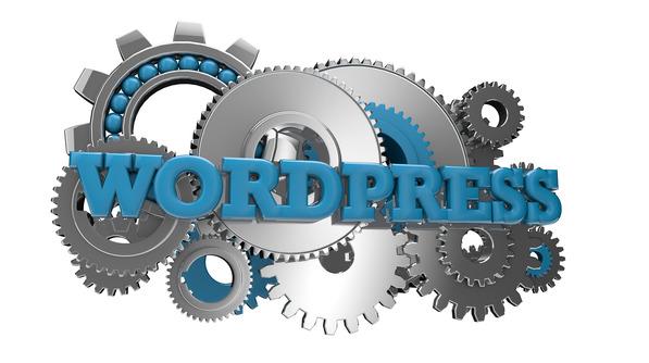 Picutre of a WordPress biz site